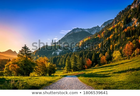 belle · automne · montagnes · coucher · du · soleil · Serbie · route - photo stock © joyr