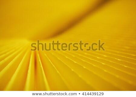 pollen filter closely stock photo © marekusz