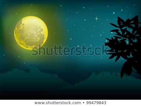 lua · noite · conjunto · vetor · illustrator - foto stock © garyfox45116