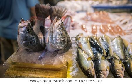 furcsa · hal · rajz · 3d · illusztráció · víz · szem - stock fotó © prill