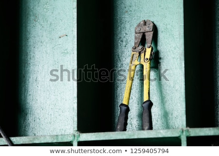 Man with a pair of boltcutters Stock photo © photography33