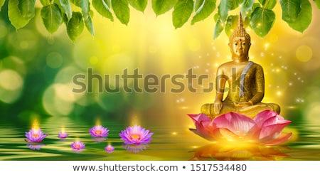 Buda manzara avuç içi hindistan cevizi mavi kafa Stok fotoğraf © mariephoto