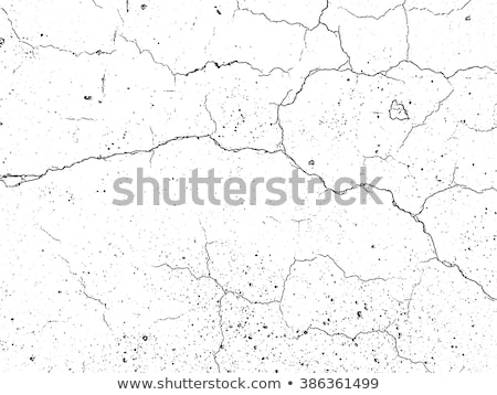 piedra · rock · textura · grunge · decoración · edificio · pared - foto stock © taviphoto
