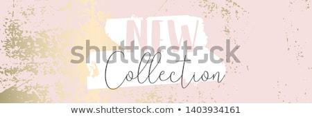 Złoty kolekcja wektora realistyczny ilustracja dziewczyna Zdjęcia stock © kovacevic