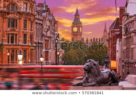 lion in londons trafalgar square with big ben in the background stock photo © antartis