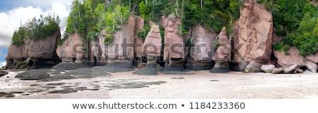 岩 低い 潮 日没 ストックフォト © wildnerdpix