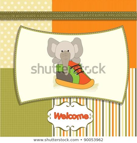 Aranyos üdvözlőlap elefánt rejtett cipő háttér Stock fotó © balasoiu