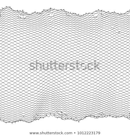 漁網 パターン 白 黒 魚 背景 ストックフォト © Leonardi