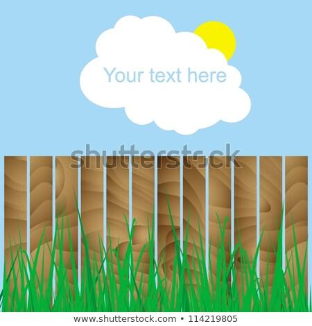 cerca · madeira · grama · nuvem · sol · assinar - foto stock © anna_tseliuba