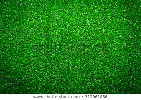 Soccer Ball on Green Grass Background Stock photo © WaD