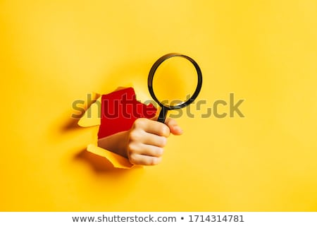 Detective search Stock photo © Thodoris_Tibilis