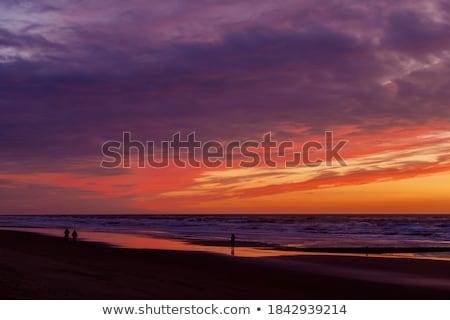 Szahara · homok · sivatag · naplemente · hegy · kék - stock fotó © taden
