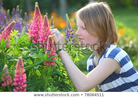 bela · mulher · vermelho · flores · vermelhas · rosas · estúdio - foto stock © feedough