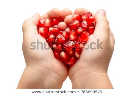 Heart of pomegranete Stock photo © Fotaw
