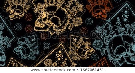 vintage skull Stock photo © studiowilke