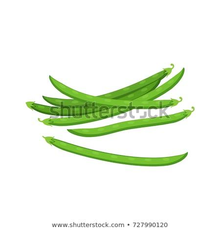 Groene bonen natuur gezondheid kleur landbouw plantaardige Stockfoto © Mikko