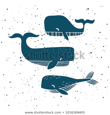 three whales in the ocean stock photo © hofmeester