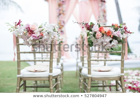 Iglesia flores verde follaje Daisy dentro Foto stock © nelsonart