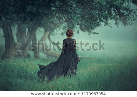 Stockfoto: Mooie · vampier · vrouw · rode · jurk · haren