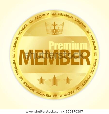 Badge titel premie lid goud kleur Stockfoto © liliwhite