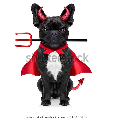 Mal rouge diable chien cartoon illustration Photo stock © digitaljoni
