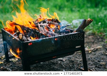 Alevler yanan ahşap arka plan Retro Stok fotoğraf © Hofmeester