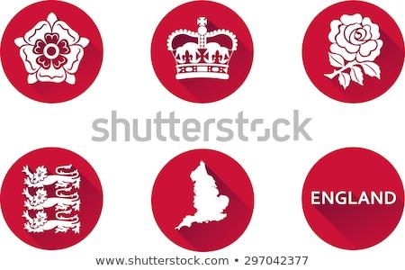 angol · oroszlán · rózsa · motívumok · öreg · zászlók - stock fotó © artybloke