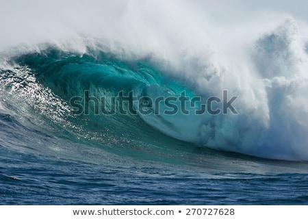 Büyük dalga deniz dünya yunus atlama Stok fotoğraf © Soleil