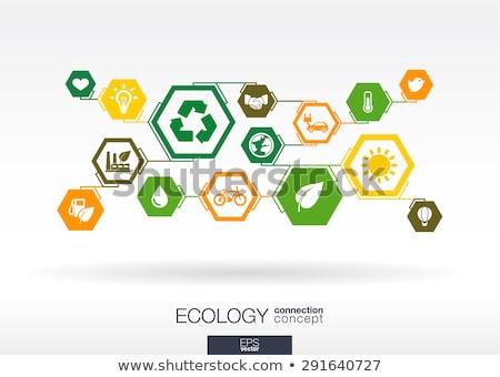 eco · casa · modelo · templates · conjunto · ecologia - foto stock © vipervxw