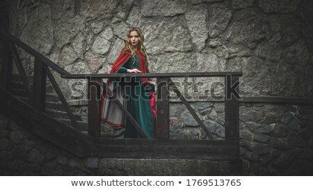 medieval woman down the stairs Stock photo © PetrMalyshev