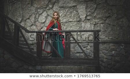 médiévale · beauté · métal · porte · fille · bleu - photo stock © petrmalyshev