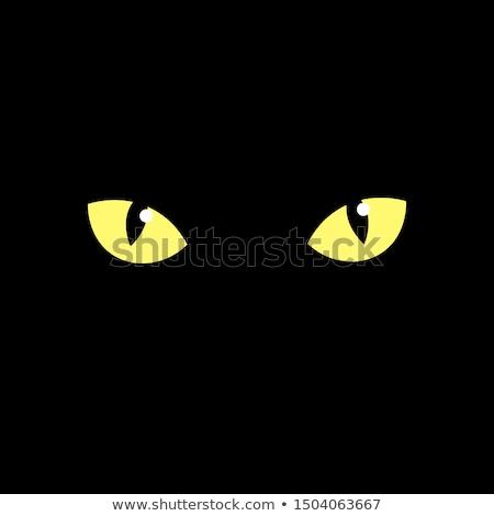 Foto stock: Gato · negro · ojo · macro · reflexión · ventana · negro