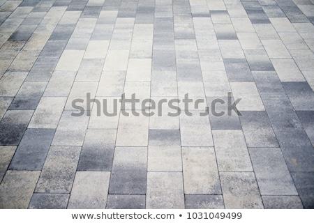 Concrete Paving Slabs Gray as Rectangles and Squares. Stock photo © tashatuvango
