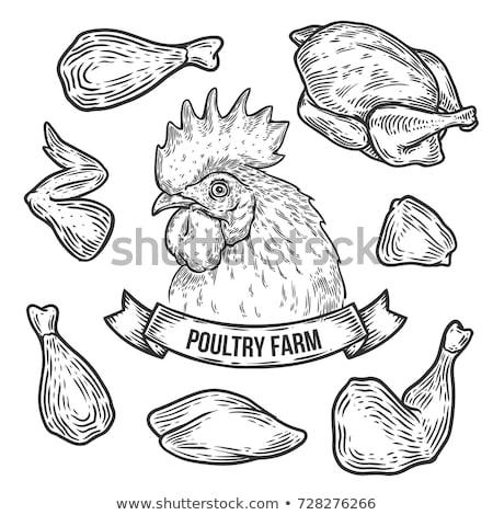 Pieczony kurczak sklep ilustracja żywności kurczaka jeść Zdjęcia stock © adrenalina