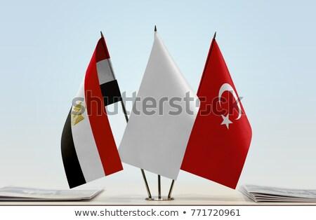 Türkiye · Mısır · bayraklar · vektör · görüntü · bilmece - stok fotoğraf © istanbul2009