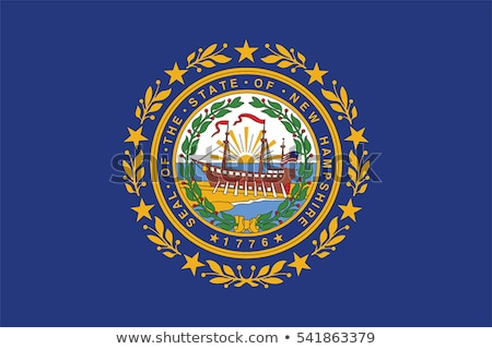 US state flag of New Hampshire Stock photo © creisinger