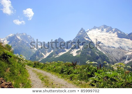 Panorama Caucasus Mountains, Dombay. Stock photo © BSANI
