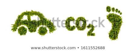 Ekolojik dostça araba stilize yeşil doğa Stok fotoğraf © ElaK