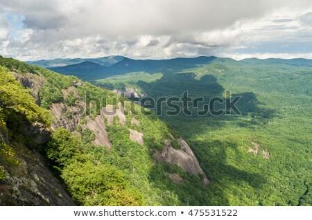Trail to summit of Whiteside Mountain Stock photo © backyardproductions
