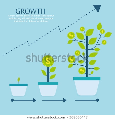 An infographics showing a tree Stock photo © bluering