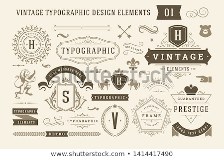 Set of elements vintage frame  stock photo © Vanzyst