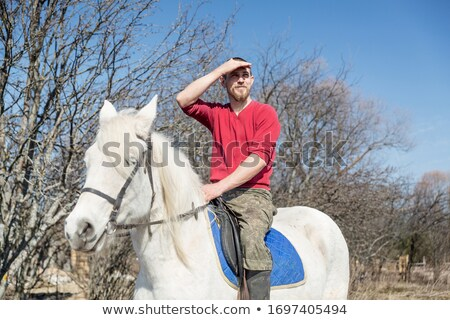 riding man on stallion Stock photo © cynoclub