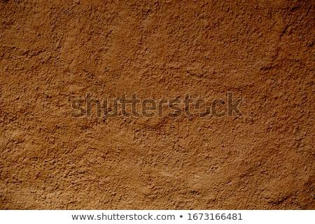 Cardboard on soil Stock photo © stevanovicigor