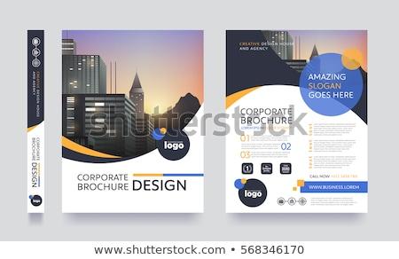 meetkundig · business · brochure · flyer · ontwerp · vector - stockfoto © SArts