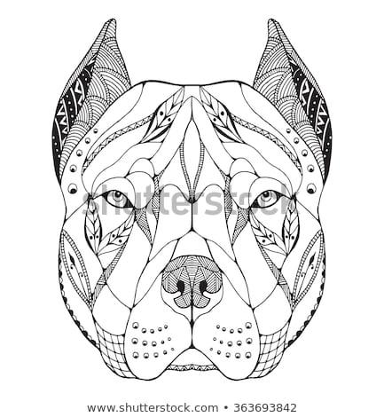 desenho · animado · rabisco · cão · ilustração · livro · para · colorir · livro - foto stock © natalia_1947
