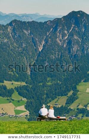 senior couple on mountain summit Stock photo © IS2