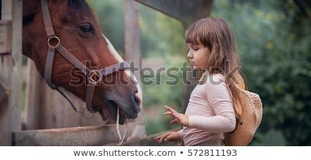 girl petting horse stock photo © fotoyou