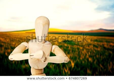 Fából készült szobrocska térdel mindkettő kezek játék Stock fotó © wavebreak_media