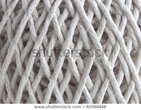 tangle of rope close up stock photo © oleksandro