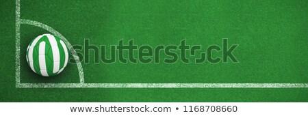 Football in nigeria colours against soccer field plan  Stock photo © wavebreak_media